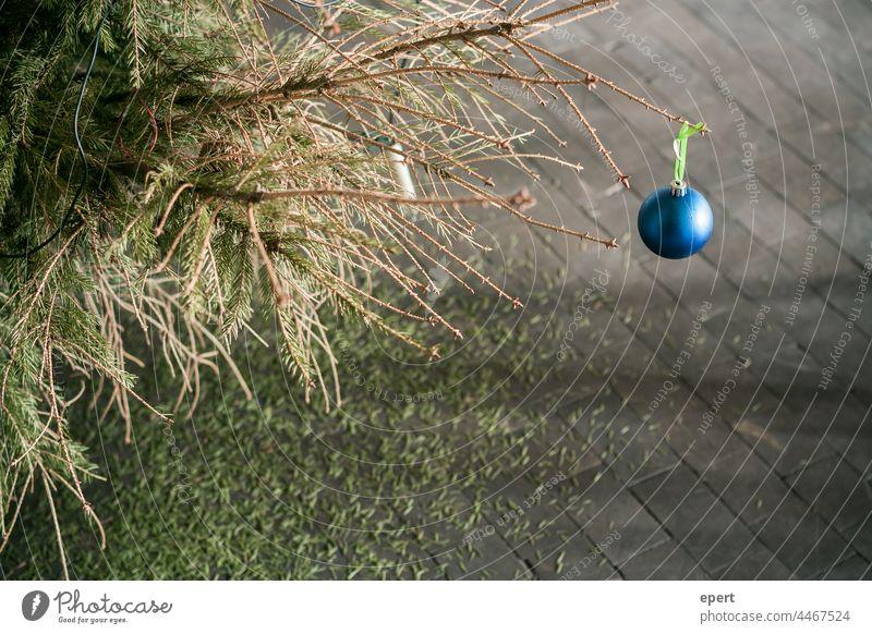 anticipation Christmas & Advent Glitter Ball fir tree Fir needle Jewellery Anticipation Gloomy Christmas tree christmas eve Winter christmas time