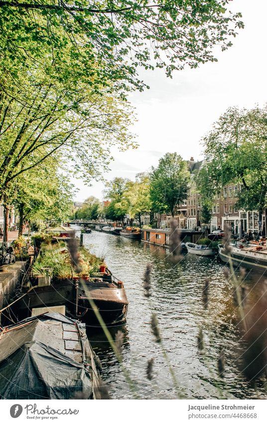 View of houseboats in the Prinsengracht, Amsterdam, Netherlands Berensluis dutch Gracht Houseboat Houseboats Channel De 9 Straatjes De Negen Straatjes