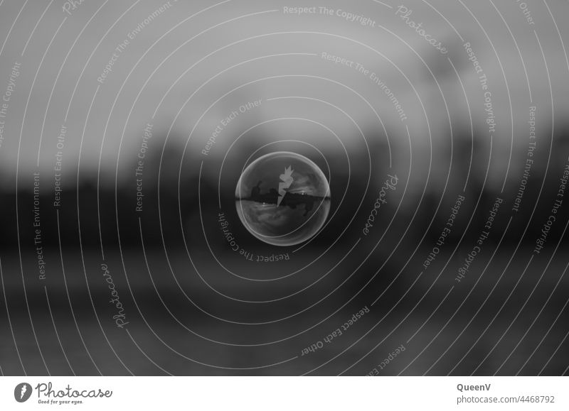 Soap bubble in black and white Black & white photo Hover Blow Dream Air Flying Gas Easy Round Past Ease Playing Bubble Reflection reflection
