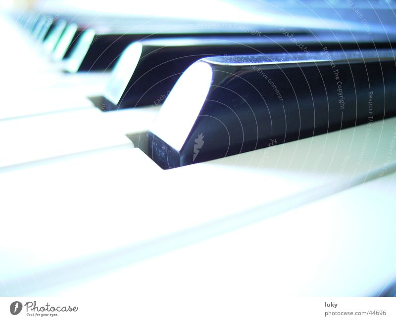 Leisure and hobbies Keyboard Piano Overexposure