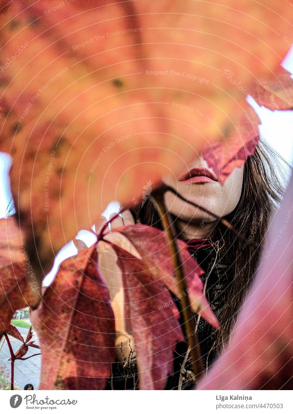 Lips hidden between Autumn leaves Mouth Woman Face Eyes Beautiful Lipstick Adults Make-up Feminine Human being Obscure Hidden Colour photo Autumnal