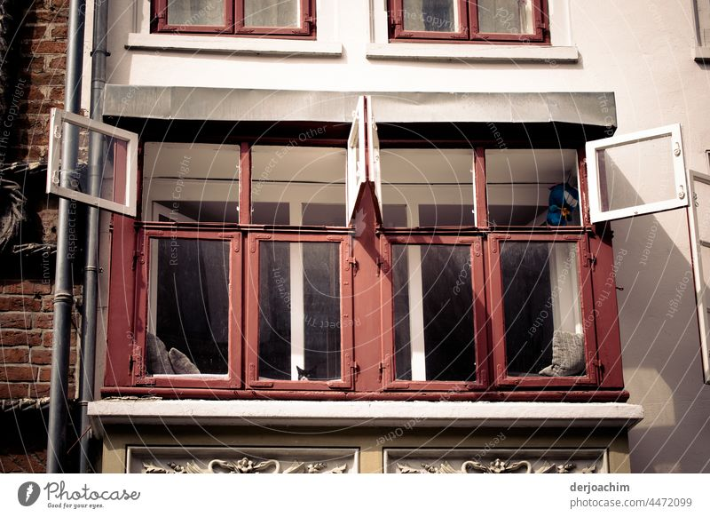 It's summer. The upper windows are opened completely, so that fresh air comes into the room. The window sashes are white on the inside and red on the outside. Under the edge of one window there is a cat's head.