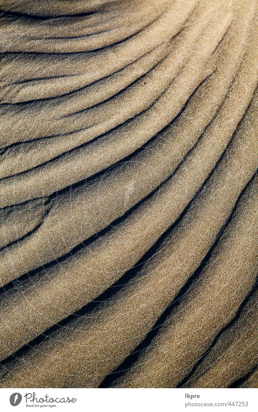 abstract texture of a dry sand and the beach Vacation & Travel Tourism Trip Summer Beach Island Nature Sand Rock Coast River Stone Dirty Brown Yellow Gray Black