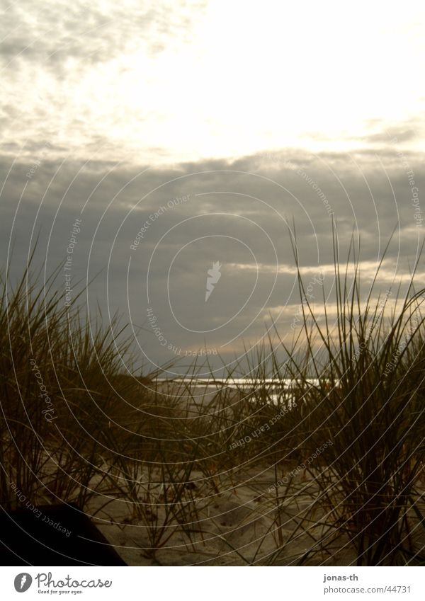 Nature Water Sun Ocean Beach Clouds Landscape Romance Schleswig-Holstein