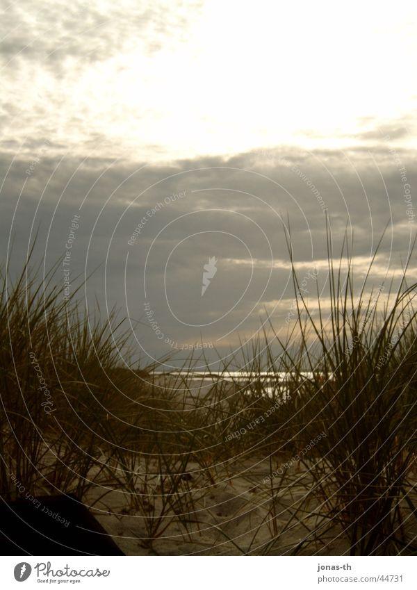 Sunset Beach Ocean Schleswig-Holstein Romance Clouds Nature Landscape Water