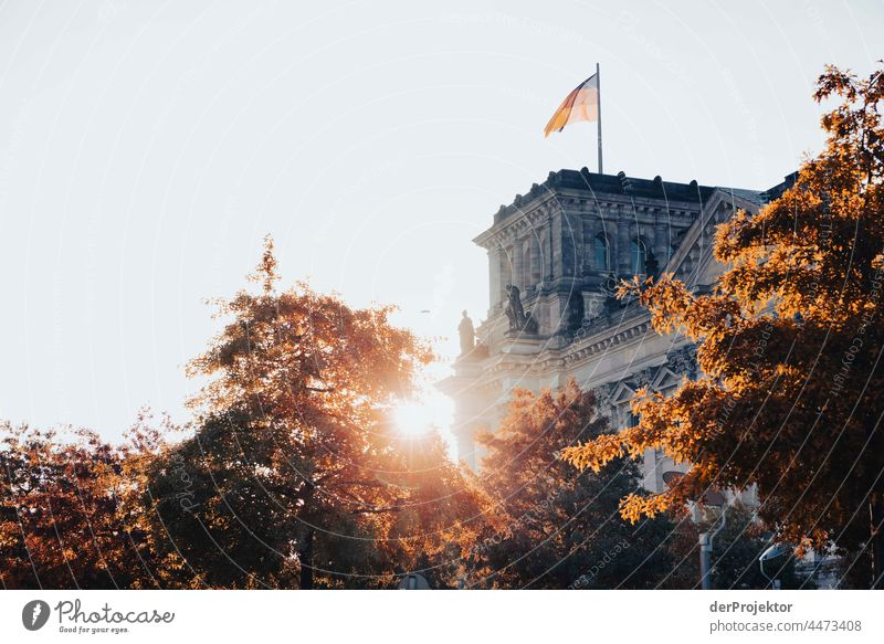 Reichstag in the morning in autumn IV Downtown Berlin Sandstone Concrete Central perspective Abstract Pattern Structures and shapes Morning Beautiful weather
