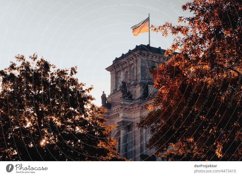Reichstag in the morning in autumn III Downtown Berlin Sandstone Concrete Central perspective Abstract Pattern Structures and shapes Morning Beautiful weather