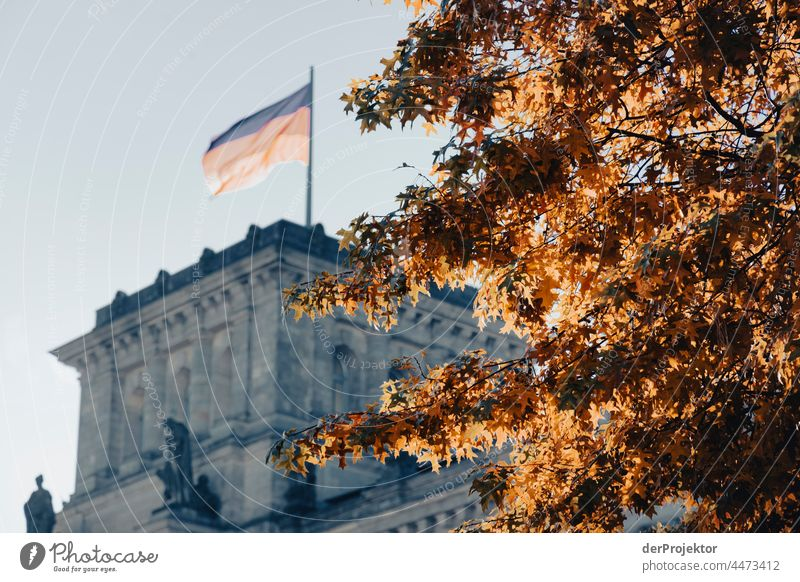 Reichstag in the morning in autumn II Downtown Berlin Sandstone Concrete Central perspective Abstract Pattern Structures and shapes Morning Beautiful weather