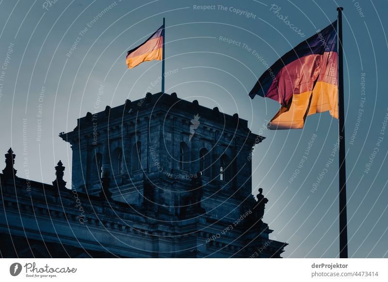 Reichstag in the morning in autumn I Downtown Berlin Sandstone Concrete Central perspective Abstract Pattern Structures and shapes Morning Beautiful weather