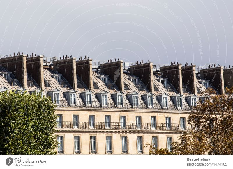 Above the roofs of Paris Roof Fireside Chimney Exterior shot Architecture House (Residential Structure) Deserted Balcony Colour photo Day Window