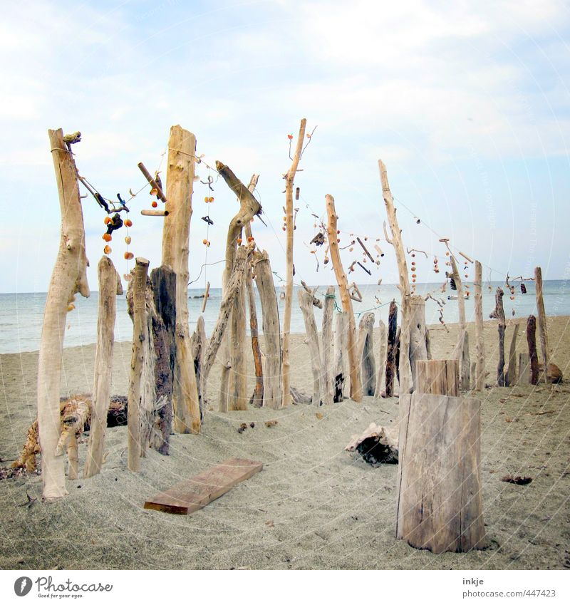 what was left of the summer Art Work of art Sculpture Environment Sand Water Sky Clouds Summer Beautiful weather Branch Tree trunk Stick Coast Beach Ocean