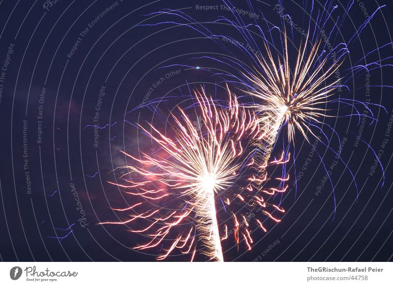 Feasts & Celebrations Switzerland Firecracker Historic Year Independence Day