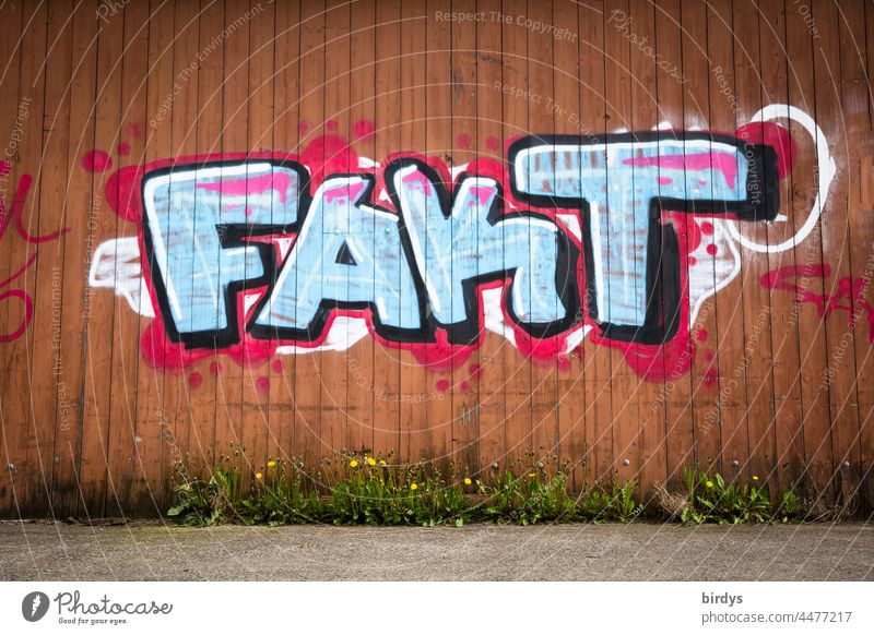 Fact - colorful graffiti on a red wooden wall fact Graffiti Characters in point of fact Really truthfully facts de facto street art Youth culture Word