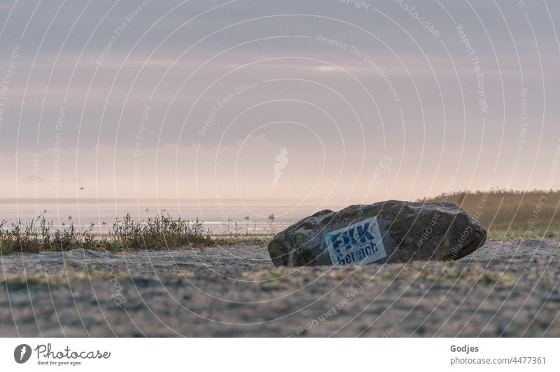 Rock on the beach with inscription 'FKK Bereich' in the early morning NUDISM Nudist beach Beach Morning Dawn Morning fog Summer Ocean Naked Nature Day Naturism