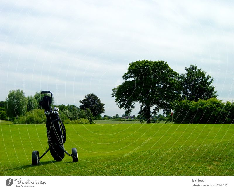 golf idyll Golf bag Green Tree Golf course Clouds Sports