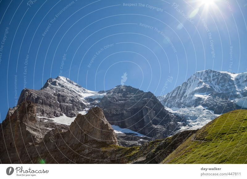 Eiger and Monk Nature Landscape Plant Elements Earth Sky Cloudless sky Sun Summer Beautiful weather Snow Rock Alps Mountain Peak Snowcapped peak Glacier