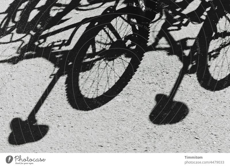 Bicycle shadows Shadow Ground bicycles Bicycle tyre Bicycle saddle Cycling Leisure and hobbies Parking Mobility Transport Deserted Black & white photo Spokes