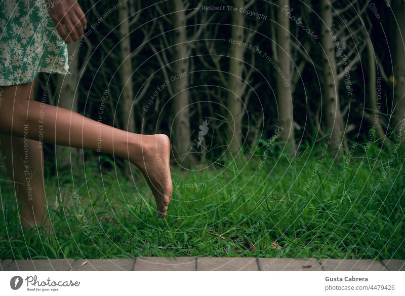 Legs walking on the grass, with trees in the background. Barefoot Trees Walking Tread Feet Grass Green Exterior shot Colour photo conceptual Toes Relaxation