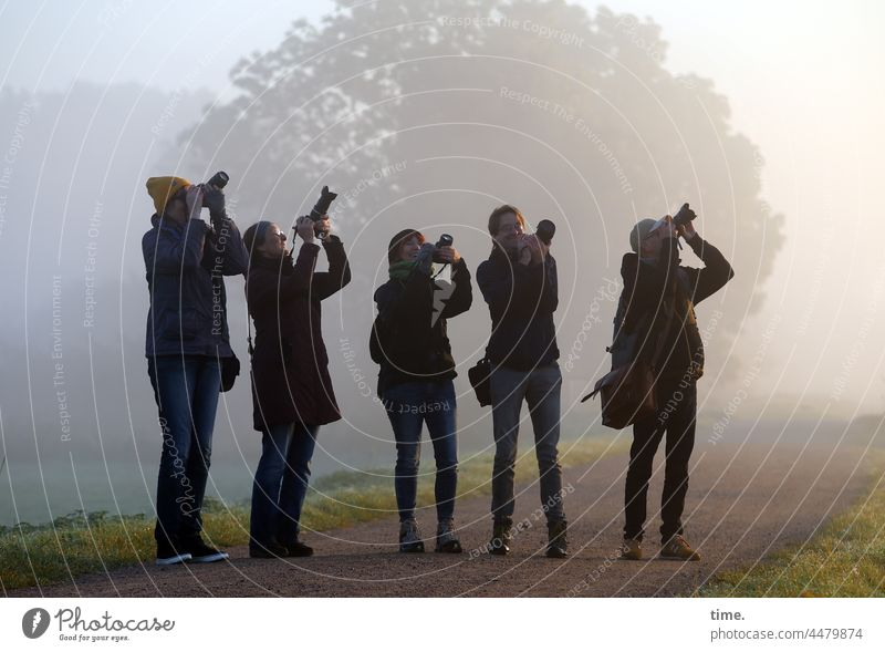 UT Teufelsmoor | Flight Motif group Take a photo Fog Tree in the morning in common In transit user meeting Stand Focus on Observe Synchronous