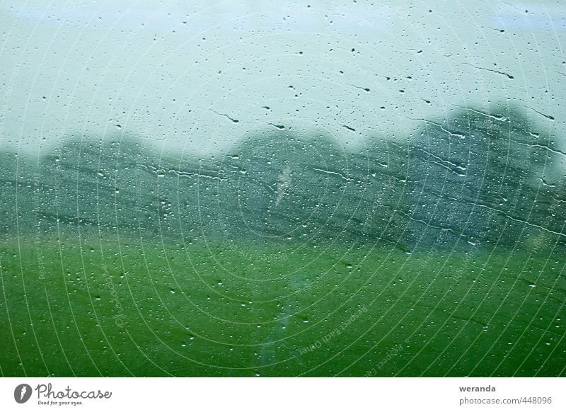 Journey through rain Environment Landscape Water Drops of water Sky Autumn Weather Bad weather Wind Rain Tree Grass Window Passenger traffic Train travel