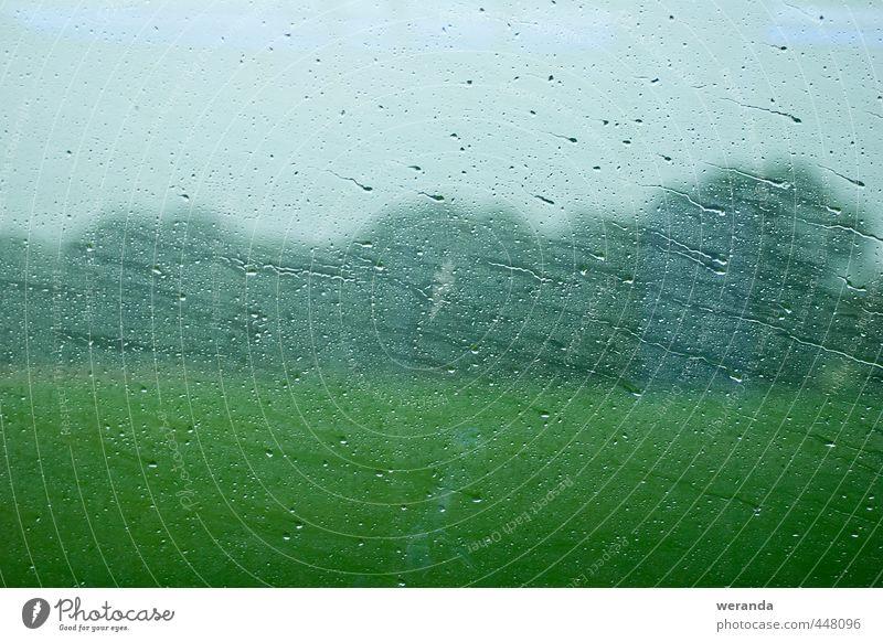 Sky Vacation & Travel Water Tree Calm Landscape Environment Window Autumn Movement Grass Rain Weather Glass Wait