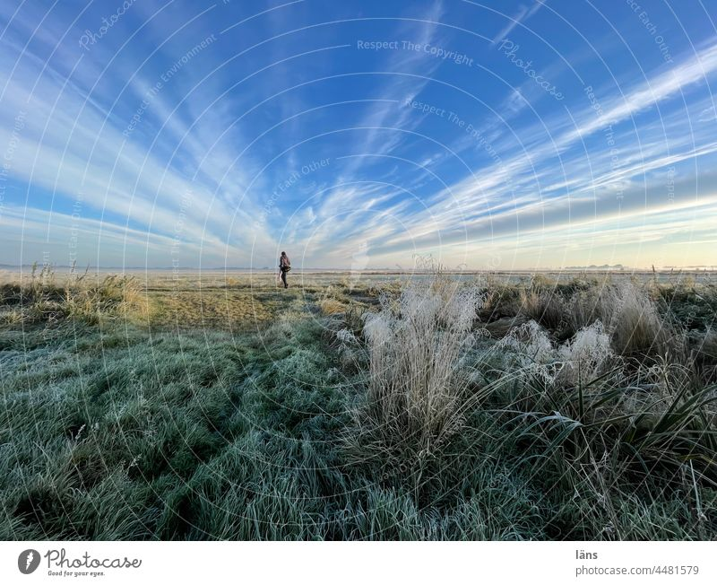 UT Teufelsmoor l Woman in the Moor devil's mire Frost Landscape Nature Sunrise Colour photo Sunlight Ice Morning Cold Human being Sky wide