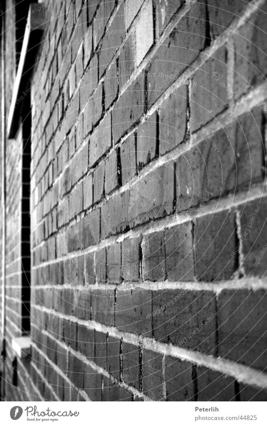 The Wall Wall (barrier) Academic studies Wall (building) Brick Window Vanishing point Black White Architecture Münster