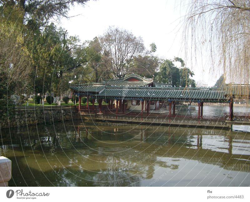 China I Building Tree Lake Park Nature Water