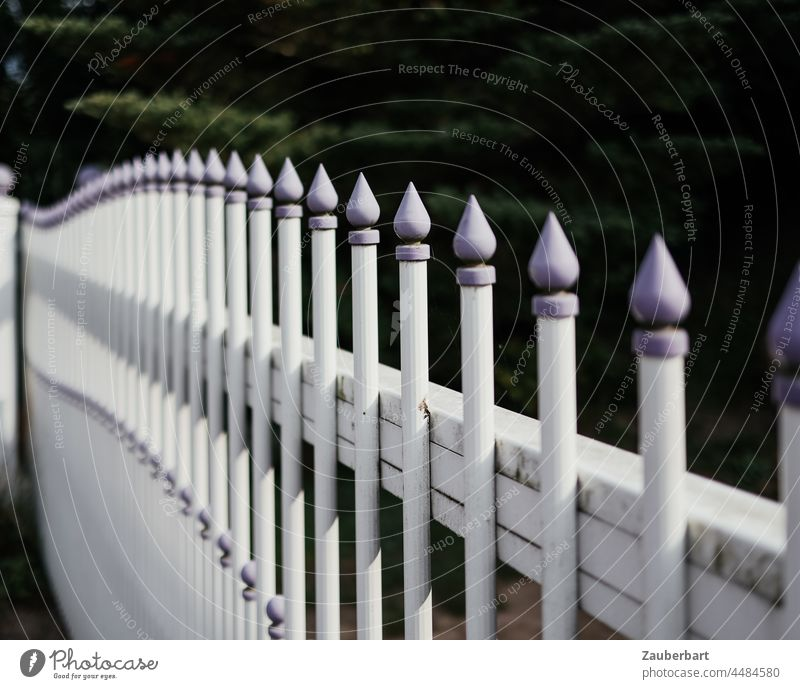 Garden fence with purple tips forms arch Fence White Arch sharpen lock Border Goal Garden door Barrier Protection Safety