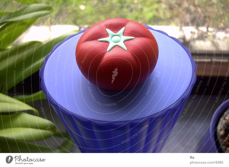 tomato Flower Photographic technology Tomato Statue