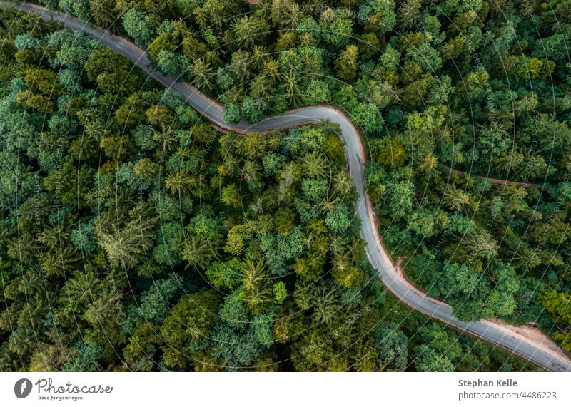 A bending road from above leading through a green forest. Drone shot for wallpapers, top down from above aerial shot in the late summer. curvy street special
