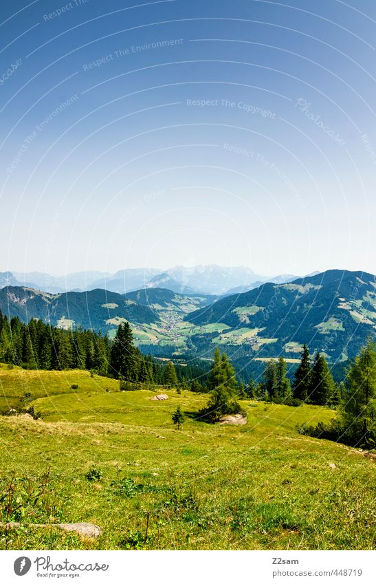 Wildschönau Vacation & Travel Trip Freedom Summer Summer vacation Nature Landscape Cloudless sky Tree Meadow Forest Alps Mountain Peak Gigantic Natural Blue