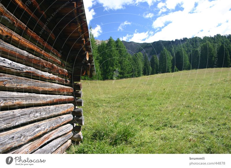 Summer Vacation & Travel Relaxation Meadow Mountain Wood Wall (barrier) Architecture Alps Derelict Hut Barn Alpine pasture Dolomites Summer's day