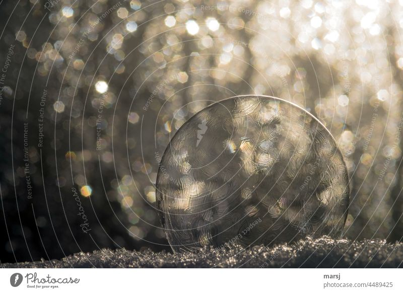 When the bubble bursts, all that's left is the bokeh and the snow on which the bullet rests. Soap bubble Mottle bokeh lights background Decoration
