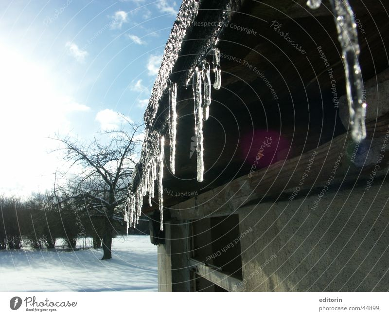 Little Ice Age Winter Icicle Cold Transport Sun Frost