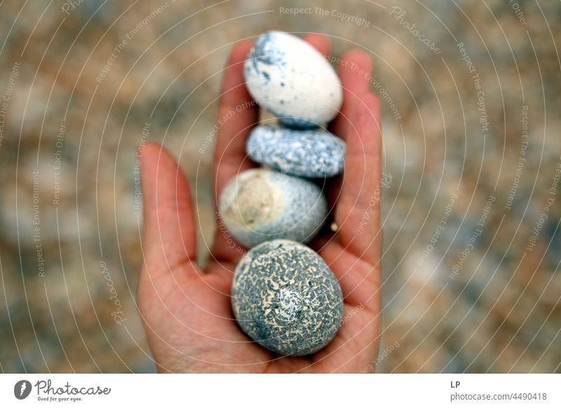 Hand holds beautiful rocks Abstract Close-up Calm Accumulation shape Pebble Ecological found sorted background Public Holiday oceanic Picked Beachcombing