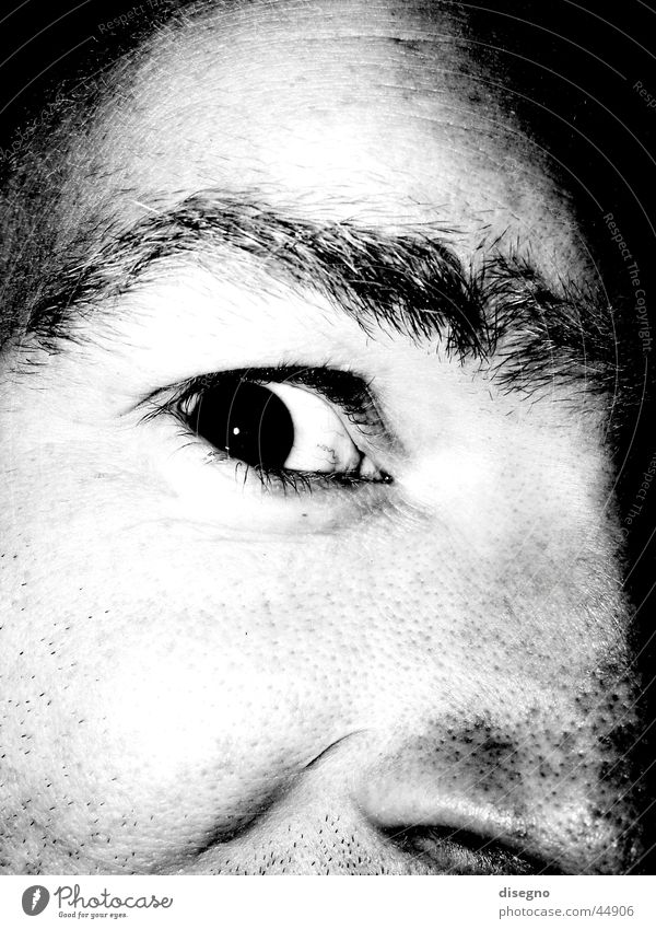 the kohnic eye Masculine Eyebrow Man Eyes freaky Black & white photo Face Nose