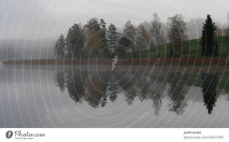 Atmospheric autumn at the lake Lake Autumn Reflection Nature Landscape Calm Sky Idyll foggy Deciduous tree Västra Götalands län Swede Silhouette Lakeside Moody