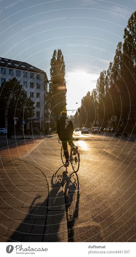 Bicyclist on street in big city backlit Bicycle Wheel Driving cyclists Back-light urban cross Transport Traffic infrastructure Cycling Street Sports Speed