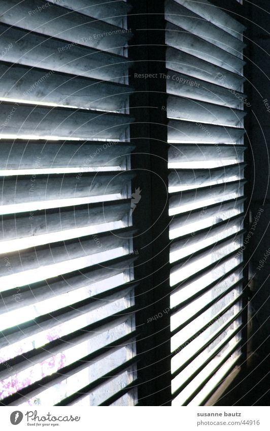 Window Wood Living or residing Mysterious Expectation Venetian blinds Flare Beam of light