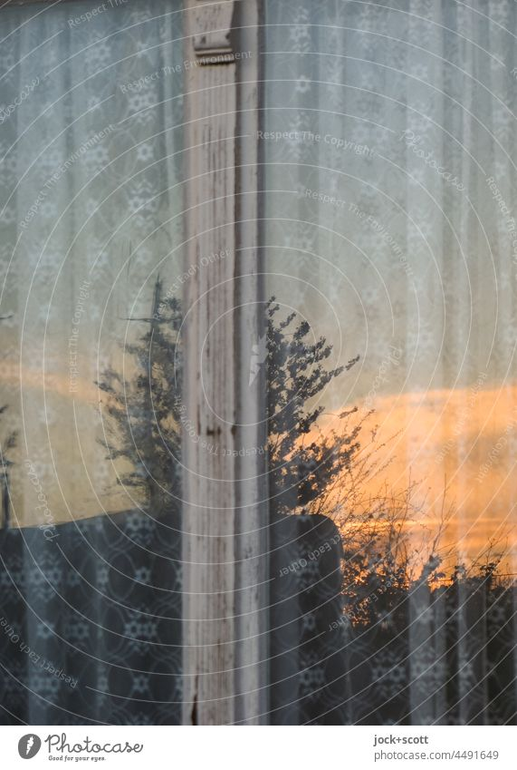 Evening red reflected in the window glass Window Window pane Sunset Sunlight Reflection Pane Curtain Pattern pattern mix Deciduous tree Detail Swede