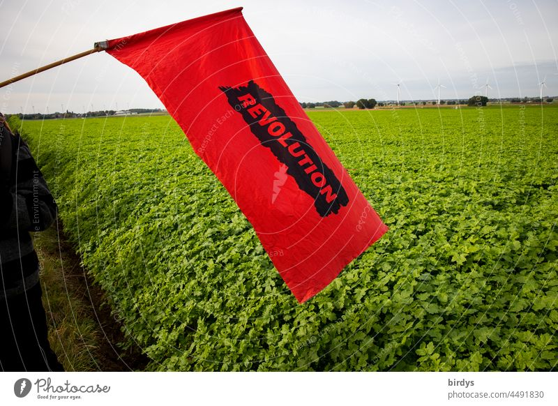 """Revolution. Red flag with the inscription """" Revolution """" in front of a green field. red flag Riot Revolutionary change battle Politics and state Flag Society"""