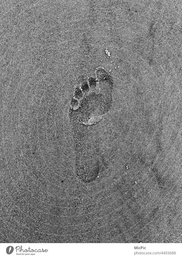 Footprint in the sand Traces in the sand leave sb./sth. traces in the sand Barefoot barefoot beach leave traces Sand Beach Imprint footprint Black & white photo