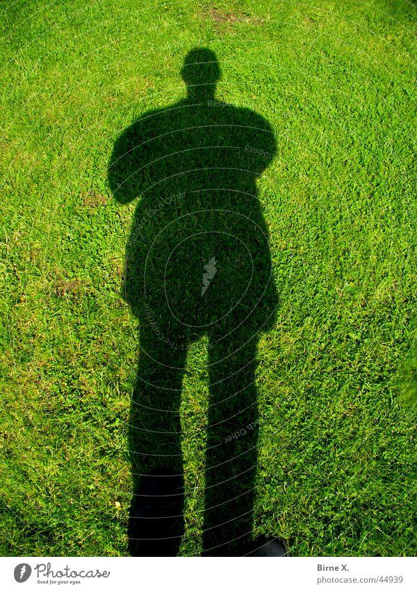 Man Meadow Grass Lawn Drop shadow