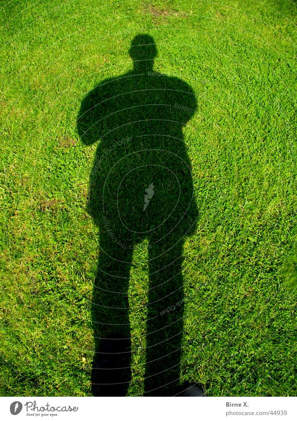 shadow Drop shadow Grass Man Silhouette Meadow Shadow Lawn obscurantist