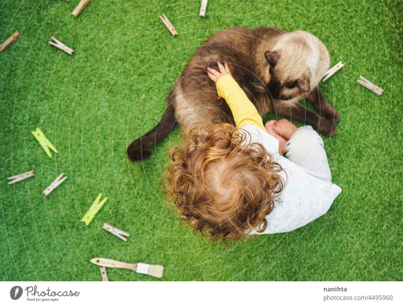 Baby playing with her cat friend baby child home free backyard siamese pet adorable love family enjoy life lifestyle fun funny relax relaxing grass leisure
