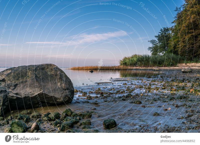 View of a stone on the beach, Greifswalder Bodden Beach Stone rock Water Sky trees Forest coast Ocean Nature Landscape Blue Clouds Tourism Waves Relaxation Rock