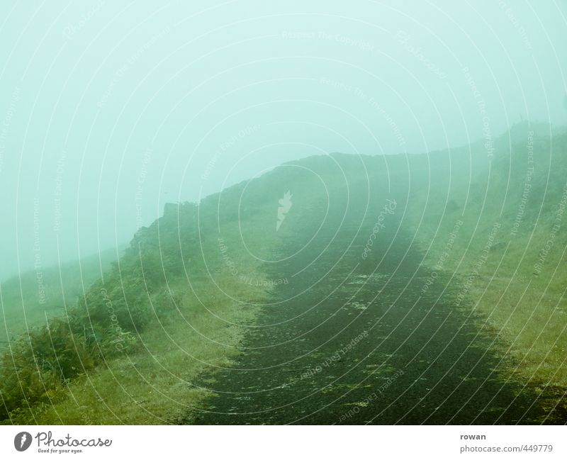 Foggy Environment Nature Landscape Clouds Bad weather Plant Grass Bushes Meadow Field Dark Creepy Footpath Street Haze Mystic Horror film Curve Rotate Invisible