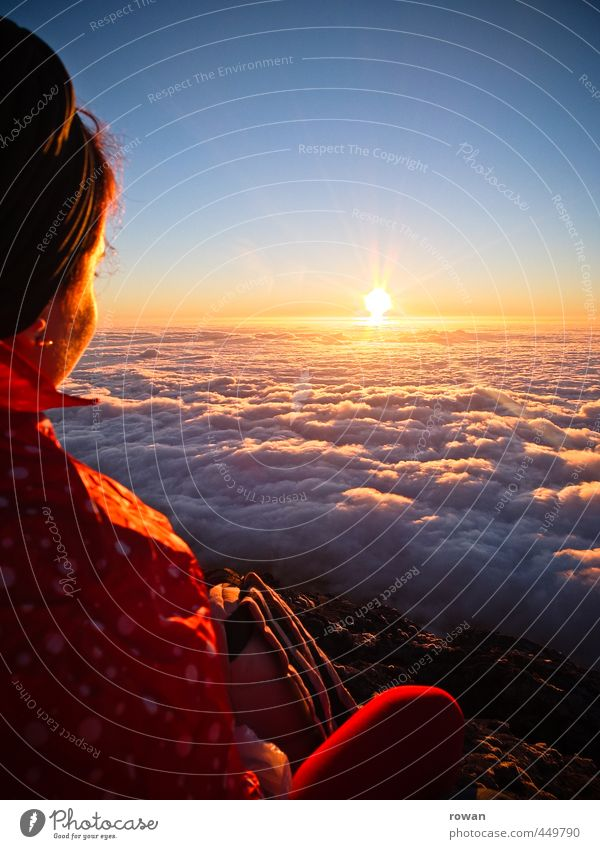 Sunset above the clouds Human being Feminine Young woman Youth (Young adults) Woman Adults 1 Infinity Clouds Cloud cover Sky Horizon Vantage point Meditative