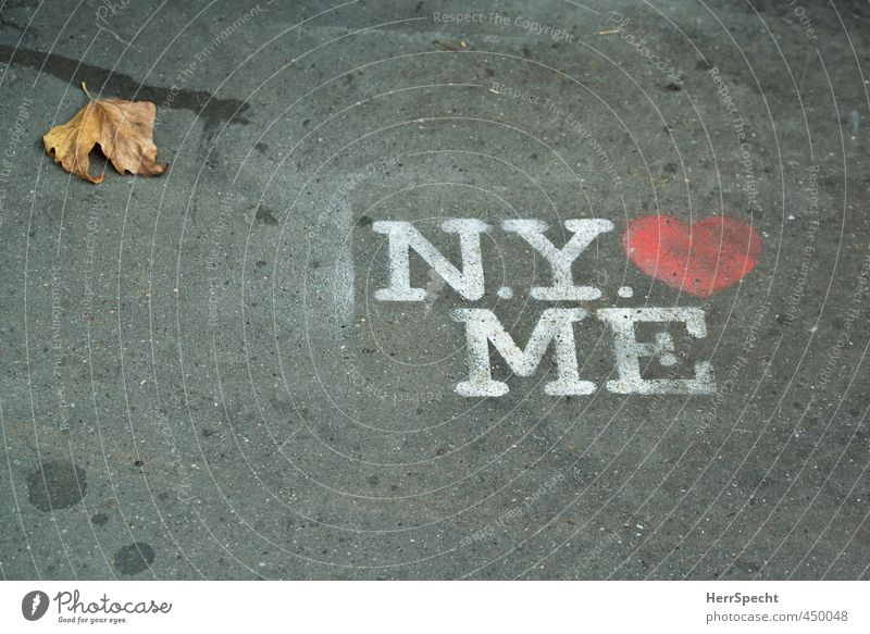 White Red Leaf Graffiti Love Autumn Gray Characters Heart Sign Sidewalk Autumn leaves Self-confident New York City Spray